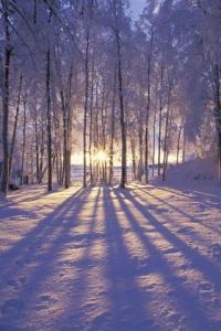 strålende vinterhelg